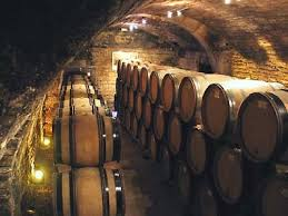 Burgundy Wine Cellar - wine tasting vineyards in france domaine goisot auxerrois