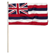 State Flag Of Alaska Hawaii State Flag Hawaiian Flags All Sizes Sale Prices