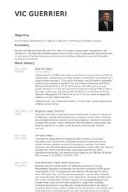 Medical Sales Resume Sample by Director Sales Resume Samples Visualcv Resume Samples Database