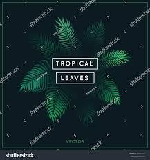 Exotic Theme Tropical Leaves Exotic Tree Foliage Green Stock Vector 585041143