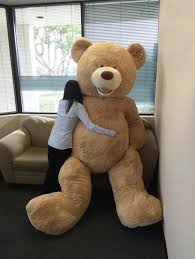 big teddy turns out the really really big teddy from costco is