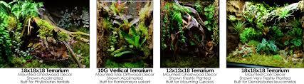 neherp backgrounds u0026 ledges for vivariums u0026 terrariums