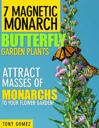 plants for a butterfly garden home design ideas and pictures