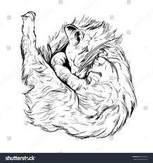 outline black white sketch cat dog stock vector 692092372