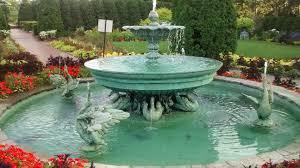free images flower pond swimming pool backyard garden