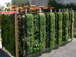 garden wall plants calm green wall living wall planter green wall vertical garden to