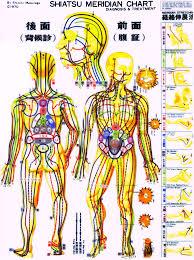 Foot Pain Map Practitioner Resources Dr Peter Borten Lac Daom