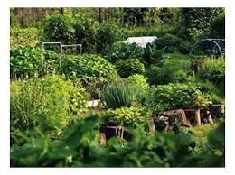 build better garden soil with free organic fertilizers organic