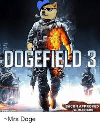3 Approved Memes - oogefield 3 bacon approved lu toastard redditcom mrs doge doge