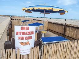 bagno per cani spiagge per cani rimini riccione e emilia romagna
