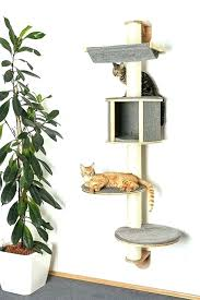 cat wall furniture cat wall furniture cat furniture wall shelves wood with cushions