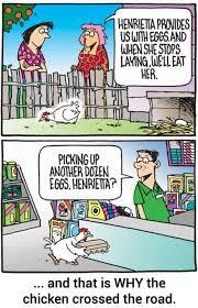 Backyard Cartoon Chicken Cartoon Backyard Chickens