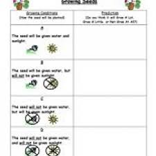 making prediction worksheets worksheets