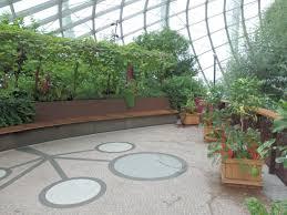 gardens by the bay singapore u0027flower dome u0027 u2013 my walkabout plants
