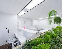 Doctor Clinic Interior Design Naoya Matsumoto Inserts Soothing Plants Into Koshida Clinic In Osaka