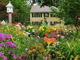 Cottage Garden Ideas Pinterest by Front Yard Cottage Garden Ideas Rdcny