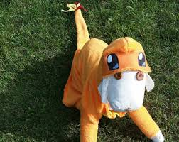 Charizard Pokemon Halloween Costume Pet Costumes Etsy