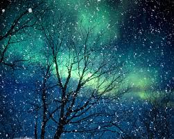 nature photography winter photography northern lights snow