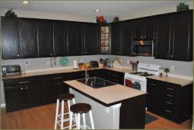 White Stain Kitchen Cabinets Kitchen Traditional Kitchen Design With Black Restaining Cabinets