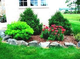 Landscaping Ideas Around Trees Garden Design Garden Design With Pictures Of Flower Ideas For