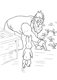 peter rabbit spotted mcgregor coloring colouring