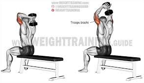 seated dumbbell overhead triceps extension exercise instruction