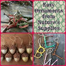 easy diy ornaments from nature s supplies family focus