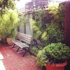 vertical gardening smithsonian gardens