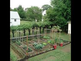 pictures how to start a small vegetable garden in your backyard