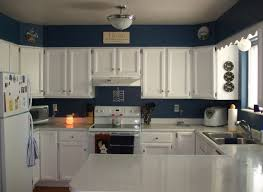 Most Popular Kitchen Cabinet Color 2014 Choosing Most Popular Kitchen Cabinet Colors Iecob Info Homes
