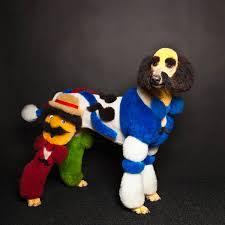 extreme dog grooming extreme