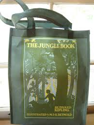 good books for young souls literary book bags how novel