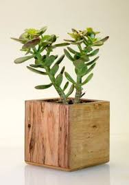 cork planter indoor planter modern planter succulent pinterest