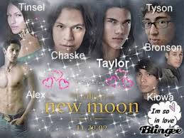63 best twilight wolf pack images on twilight wolf