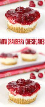 mini cranberry cheesecakes frugal eh