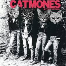 Cat Photo Album Riot Fest X Do312 U0027s Cat Ify A Punk Album Contest Riot Fest