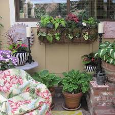 Potted Plants For Patio Northwest Gardening Patio Pots Pack A Punch