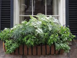 73 best window planters images on pinterest window boxes window