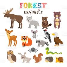 image result for cute animal cartoon images applique pinterest