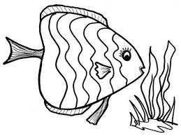 printable 38 fish coloring pages 8661 beautiful fish coloring