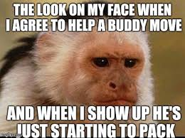 Monkey Face Meme - the moving day murders imgflip