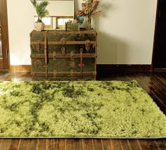 Fake Grass Outdoor Rug Outdoor Carpet That Looks Like Grass Outdoor Designs