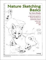 amazon co uk keeping a nature journal books books wishlist