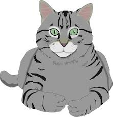 free vector graphic cat kitty gray tiger tabby pet free
