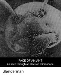 Creepy Meme - 25 best memes about creepy memes creepy memes