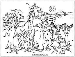 preschool jungle coloring pages jungle animals coloring page printable coloring pages for kids