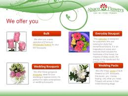 Wholesale Fresh Flowers Abaco Flowers Wholesale Wedding Fresh Cut Flowers