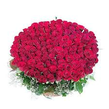 100 Roses Buy Valentine Bunch Of 100 Red Roses Flower Gift 233 Online