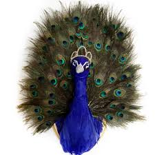 Peacock Feather Home Decor Peacock Taxidermy Faux Taxidermy Animal Head Wall Mount