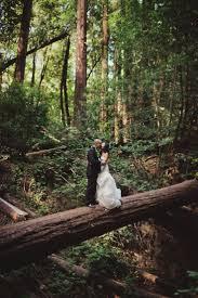 redwood forest wedding venue best 25 redwood forest wedding ideas on redwood